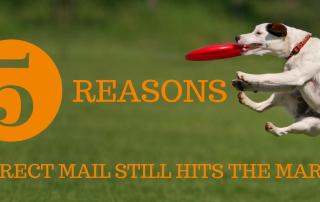 5-reasons-DM-hits-the-mark