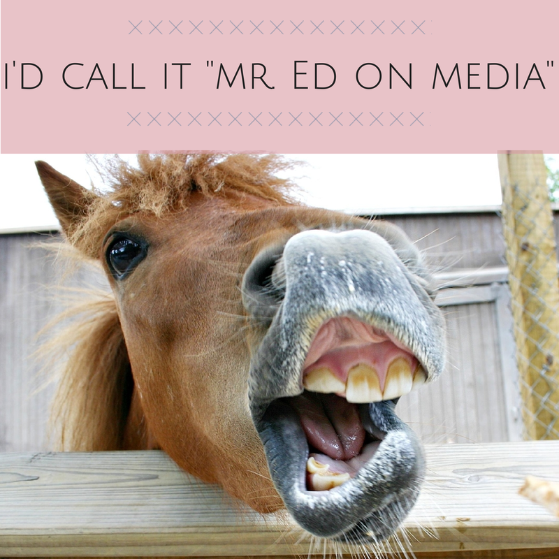 horse-talkin-mr-ed